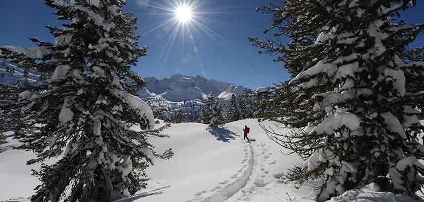 Italy_The-Dolomites-Ski-Area_Kronplatz_Snowshoeing-action.jpg